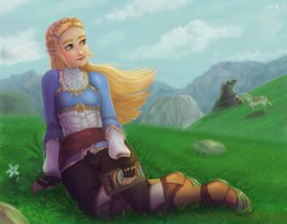 Zelda BotW by B-side7715