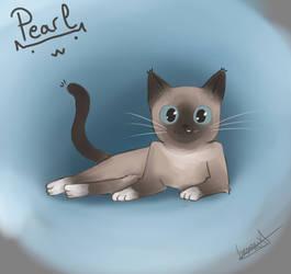 Portrait of my cat, Pearl!