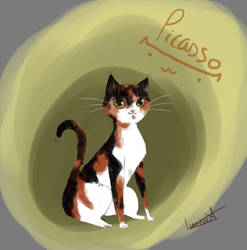 Drawing of my cat, Picasso!