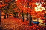 HDR autumn