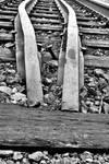 Train Tracks: Middle Rails