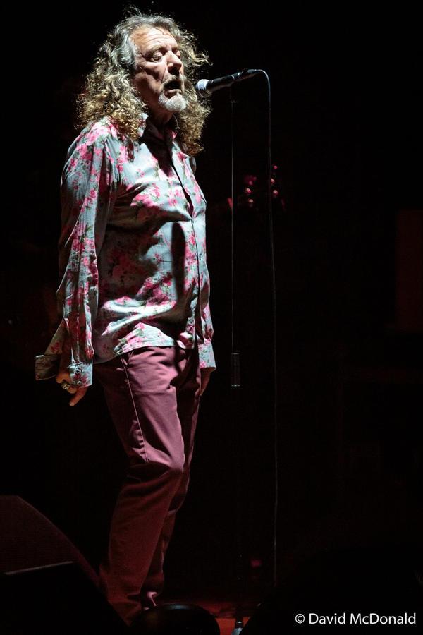 Robert Plant II by basseca
