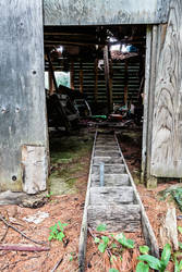 Calabogie: Abandoned Storage Shed by basseca