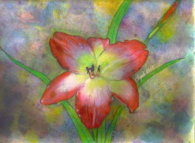 Fancy Lily 2 by syah-mj