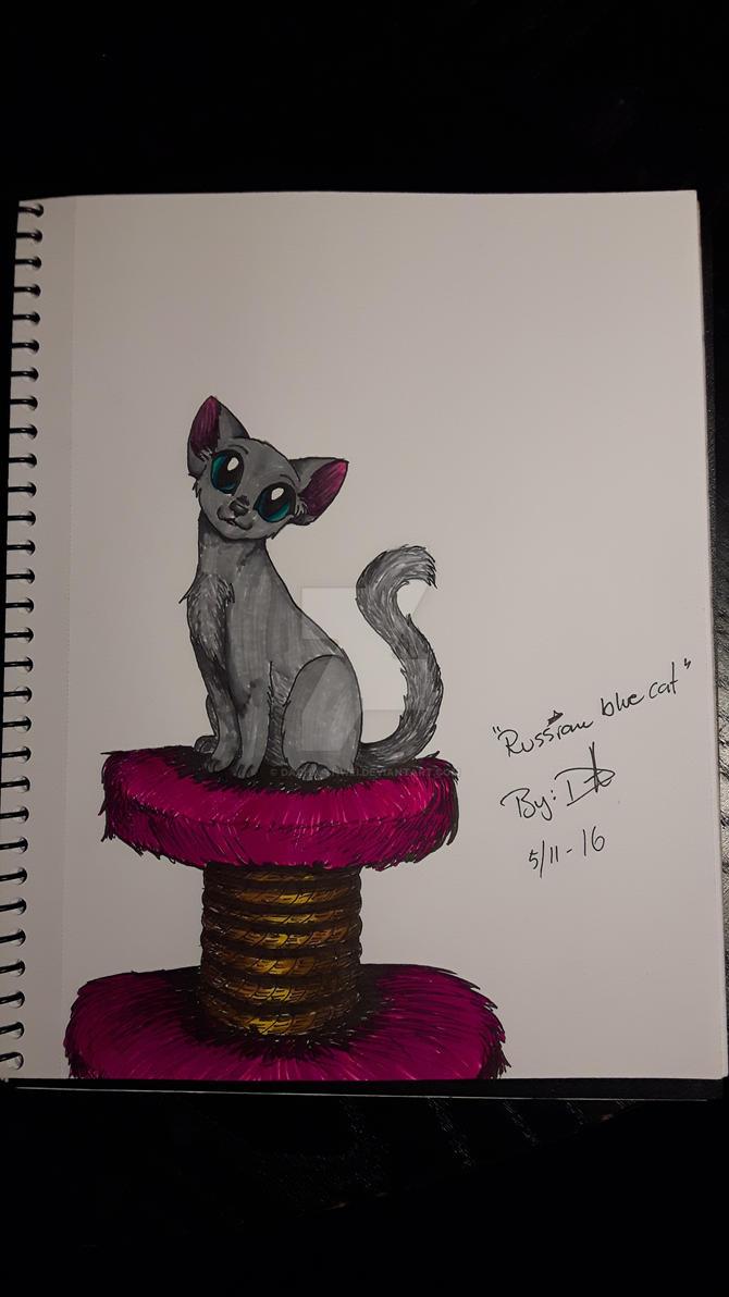 Russian blue cat by Dacha-thwei