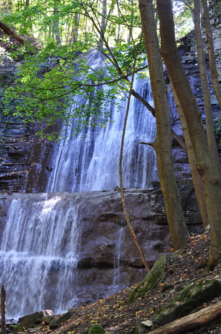 Falls with Trees - 2013 by insanity-pillz