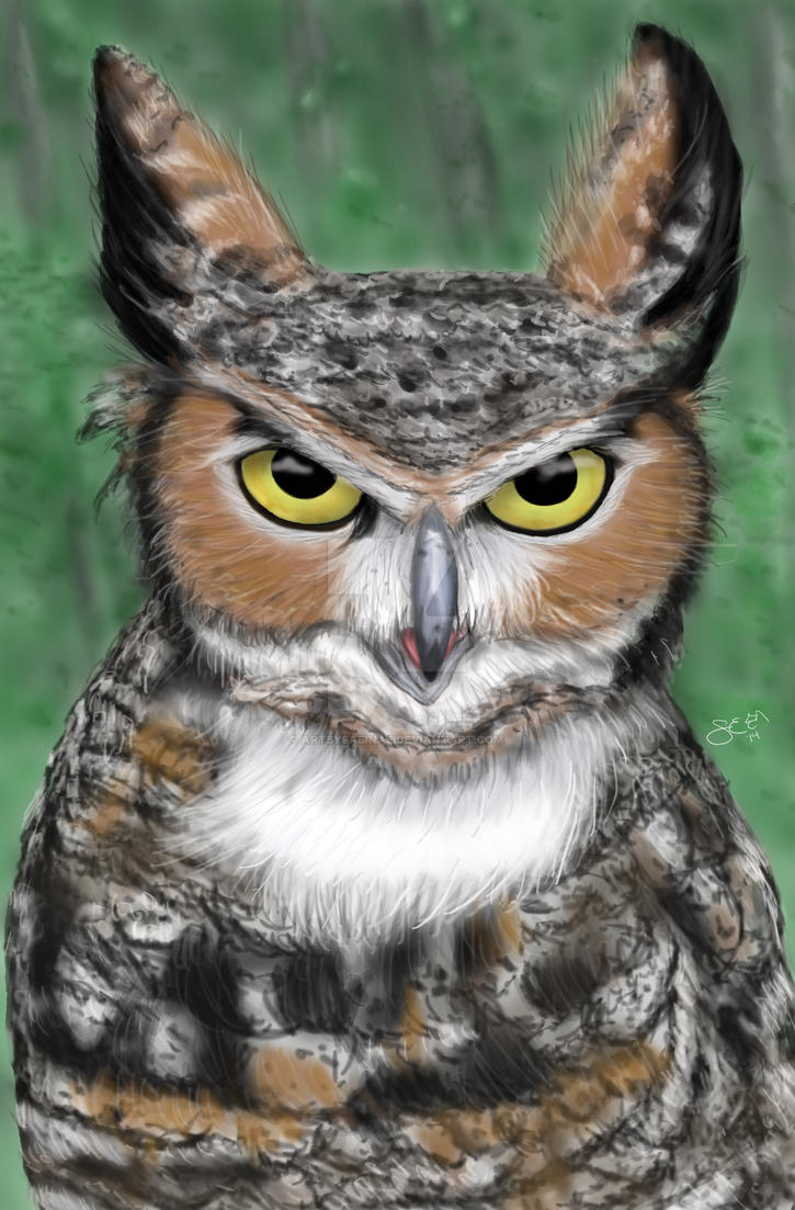 Great Horned Owl by ArtBySabinaE