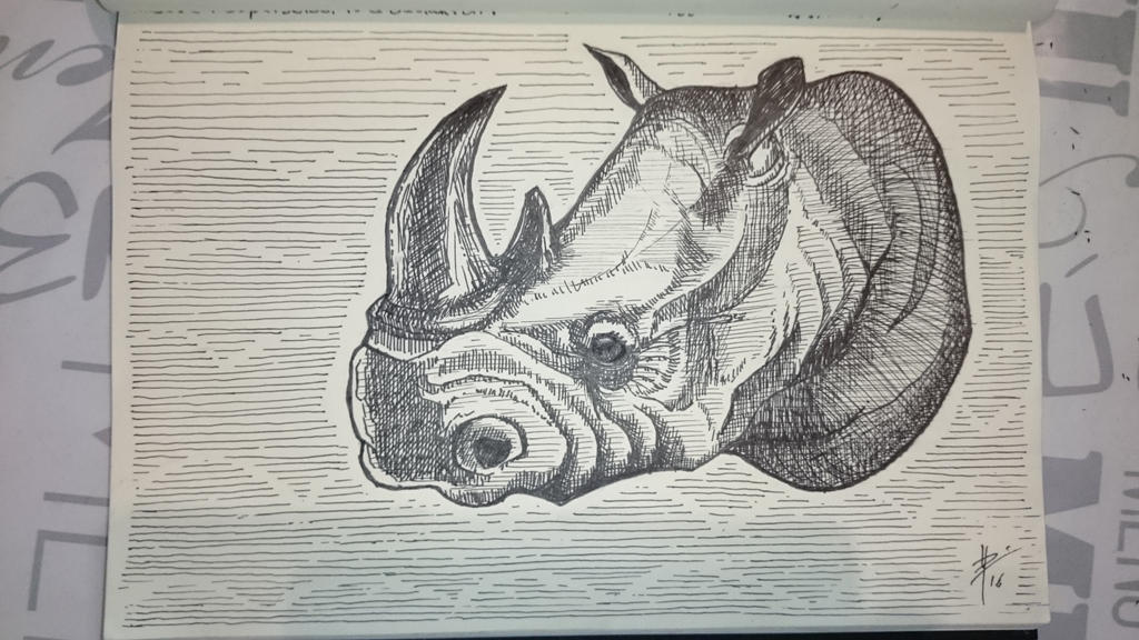 Rhino, ink 0.8 by metanull