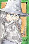 Gandalf the Grey by CristianGarro