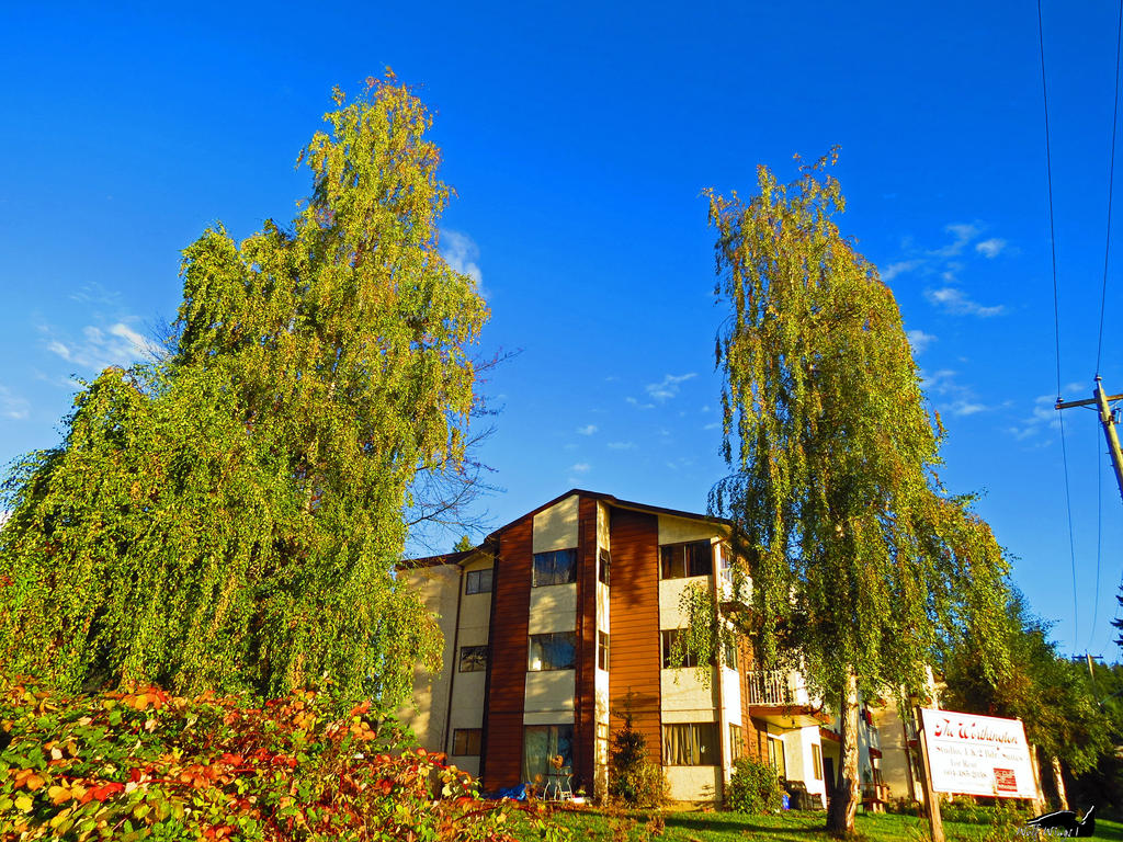 Towering Apartment Tree by wolfwings1