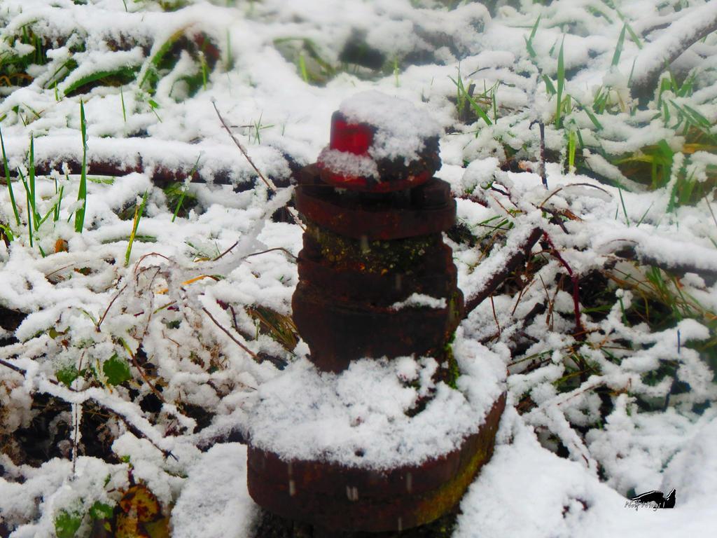 Snowy Fire Hydrant by wolfwings1