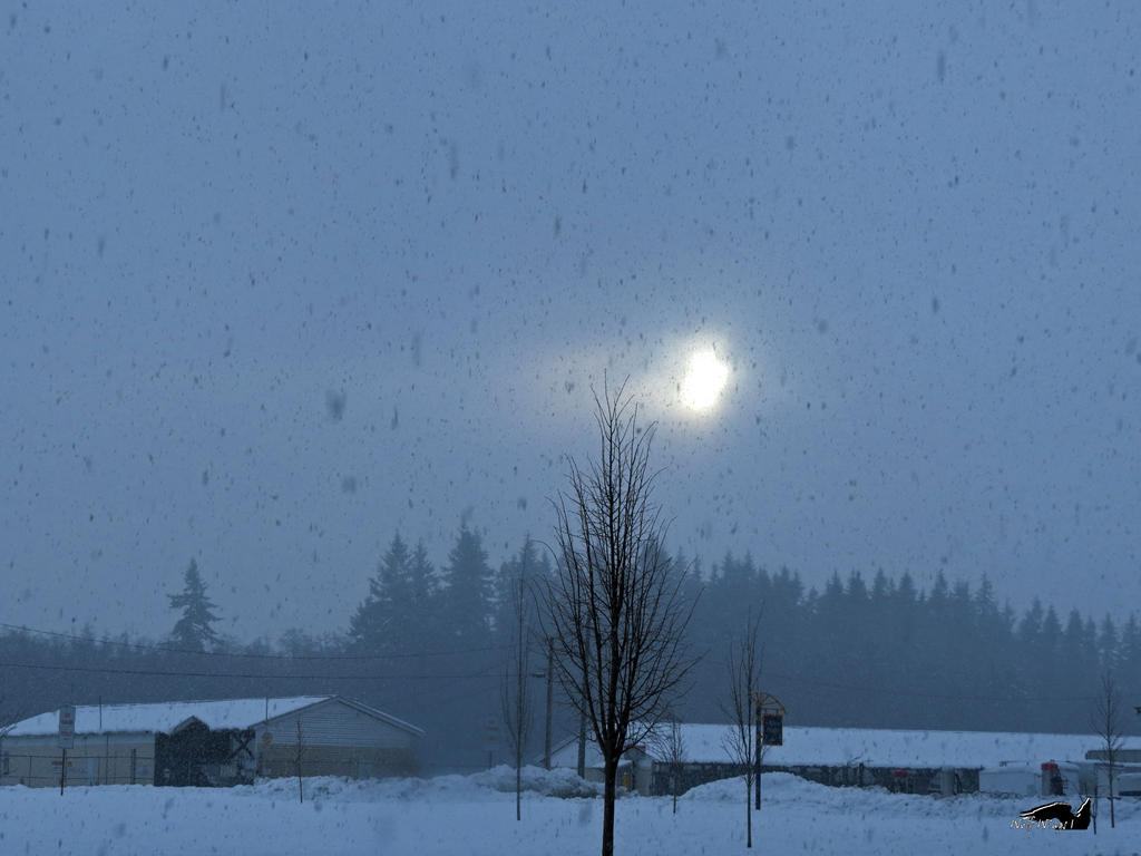 Sun Burning Through Blizzard by wolfwings1