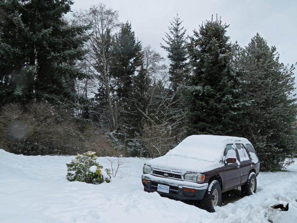 Snowed In Car by wolfwings1