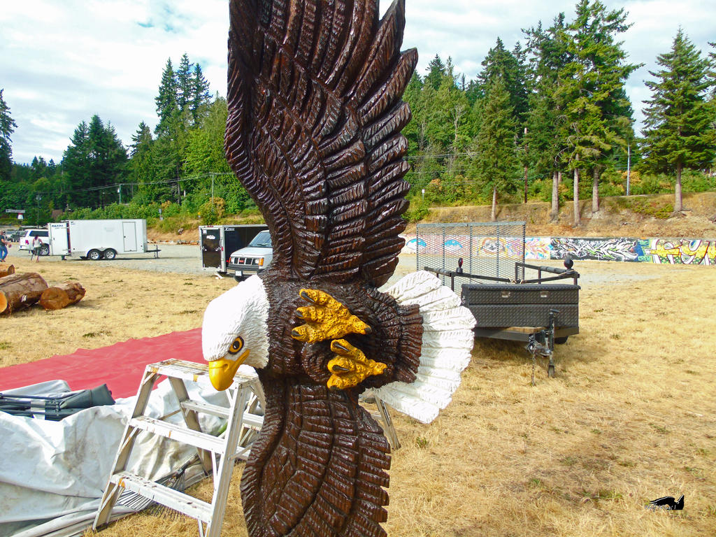 Wooden Eagle Flyby by wolfwings1