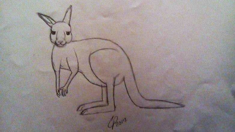 Kangaroo by Wolf--Prime