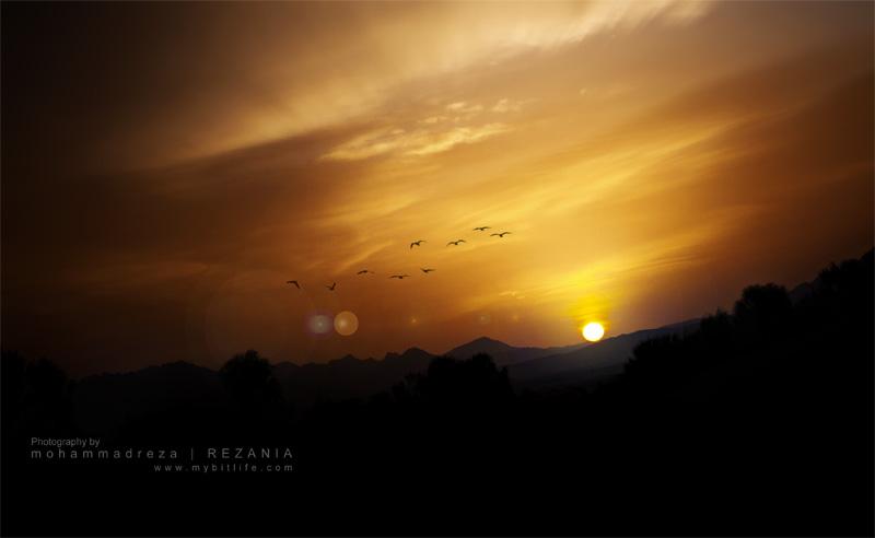 In Search Of Sunrise by mrrezania