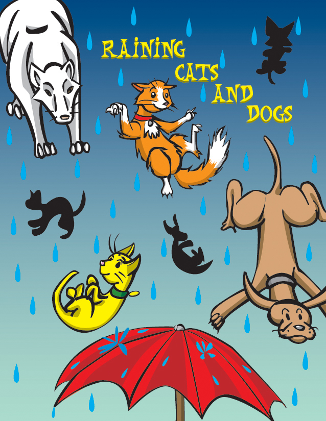 rain cats and dogs