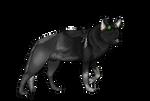 Astoria Wolf Form by Ghastr