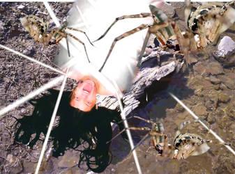 Spider Food by Smenzer