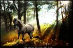 Touches of Magic (kiriban) by Sarahroo