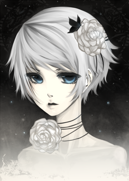 .: CdR : White Rose :. by melloskitten