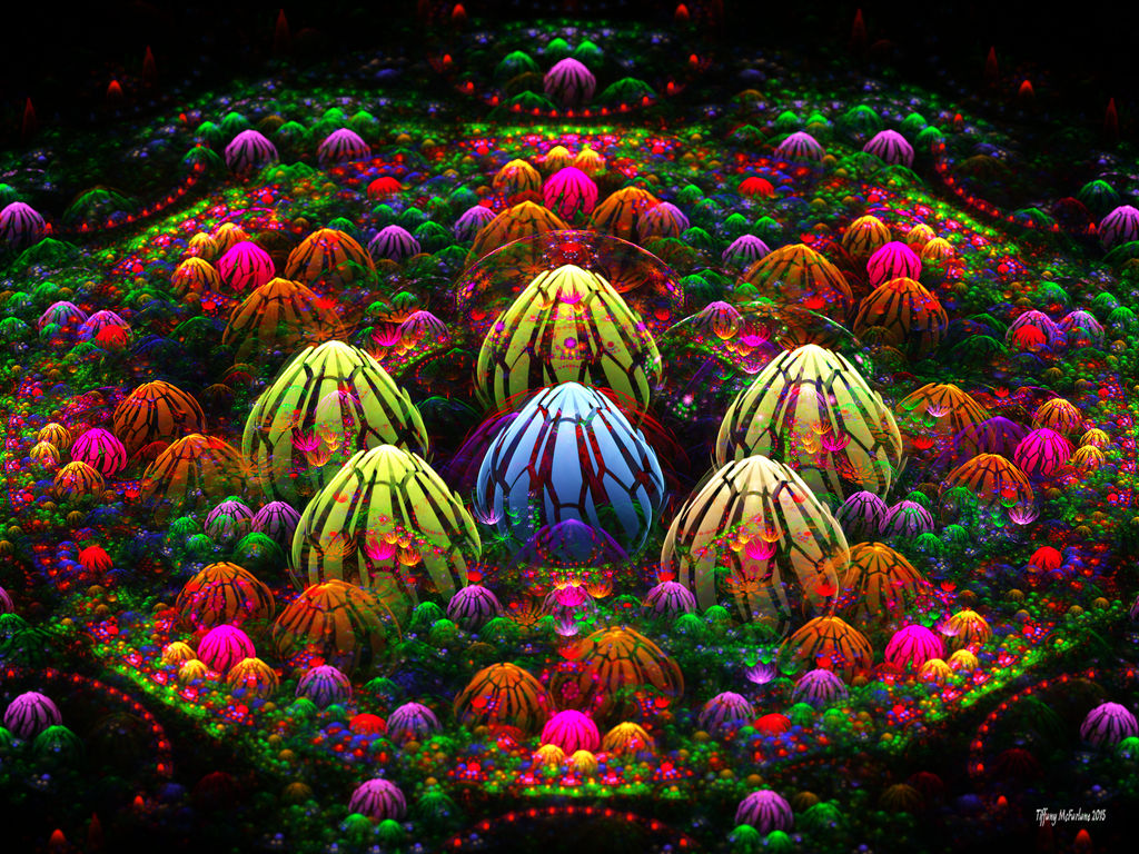 Magical Bulb Garden