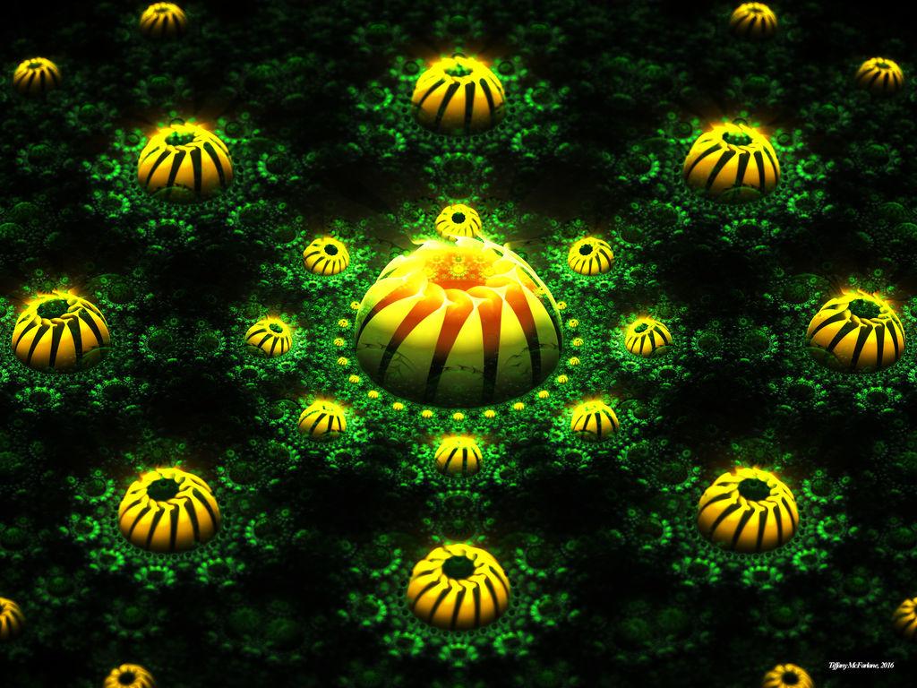 Everlasting Dandelions