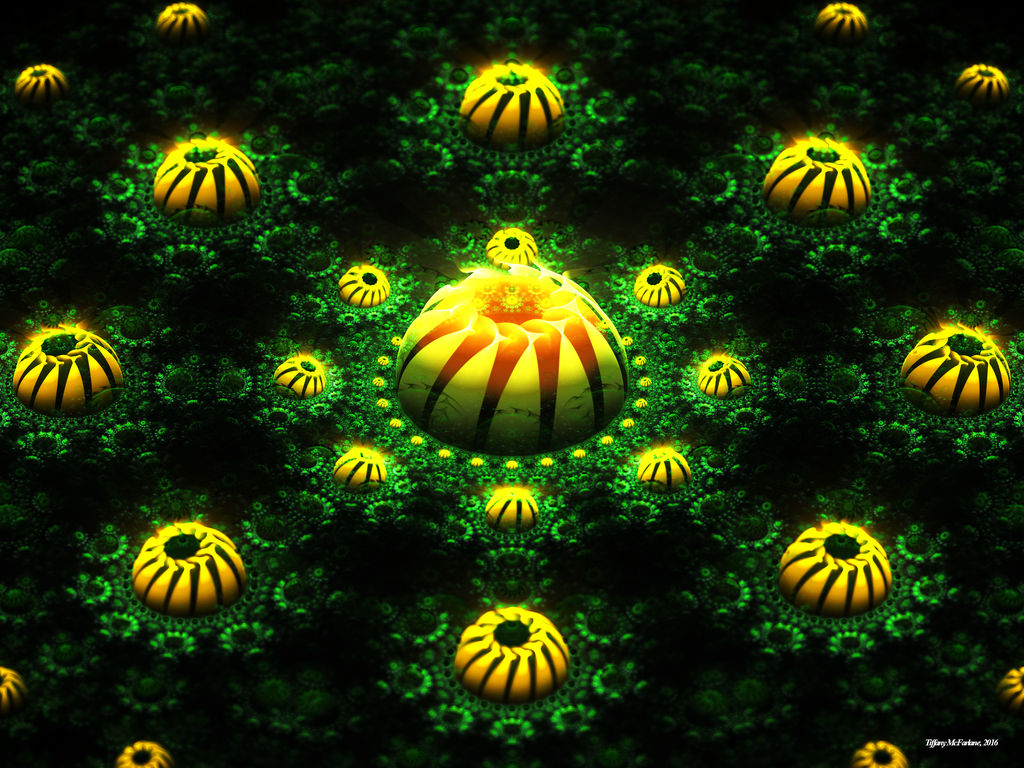 Everlasting Dandelions by tiffrmc720