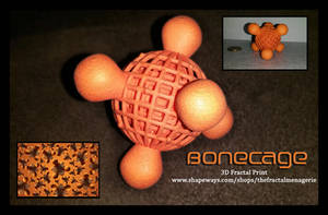 Bonecage 3D Fractal Print by tiffrmc720