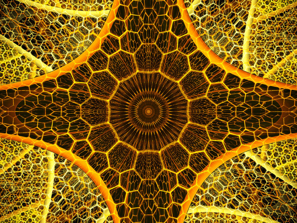 Inside The Hive by tiffrmc720