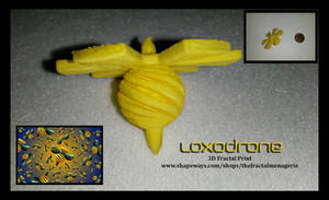 Loxodrone 3D Fractal Print by tiffrmc720