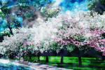 When Souls Blossom