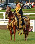 Arabian Costume 3