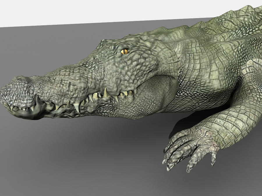 Crocodile 2 by TylerLloyd1992