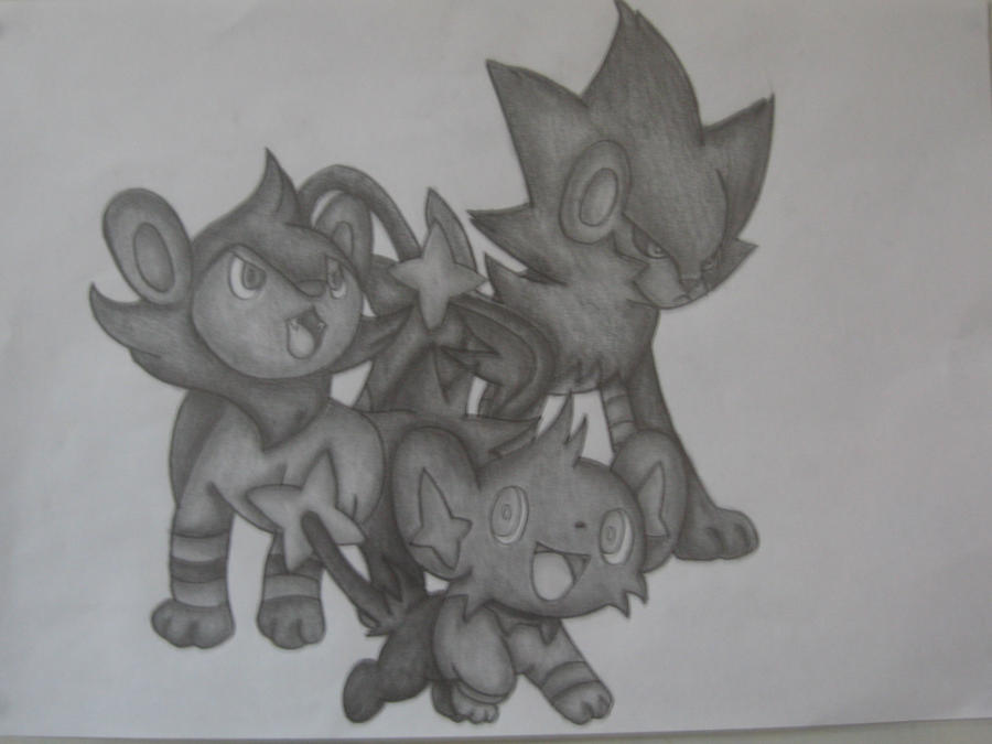 Shinx, Luxio + Luxray Drawing by sazmullium