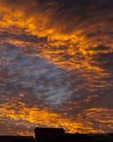 Arlington Sunset by lupiniastudios