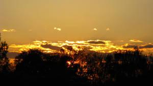 Autumn Sky 8