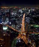 Tokyo's Main Artery 2