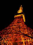 Tokyo Tower 5