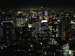 Night View From Tokyo Tower 4