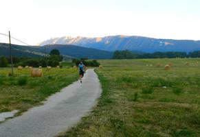 Runner by Arteragazzina