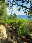 Riviera di Ulisse5