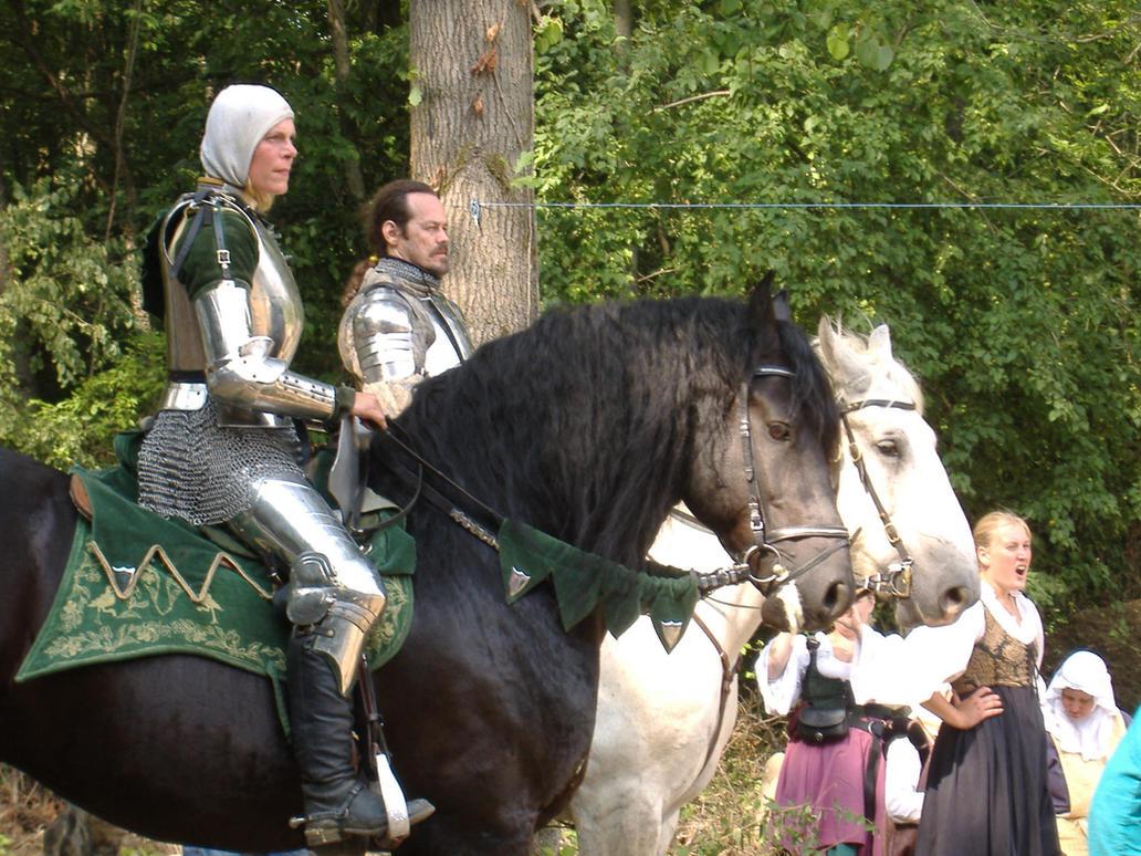 Knight 5 by akirastock