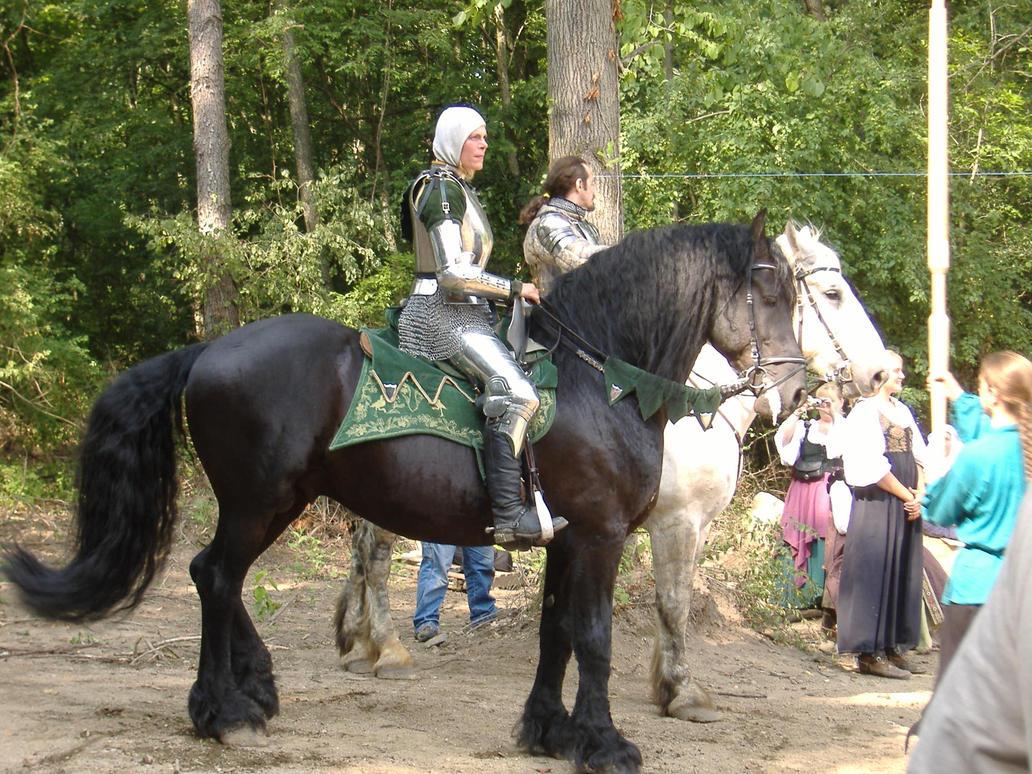 Knight 6 by akirastock