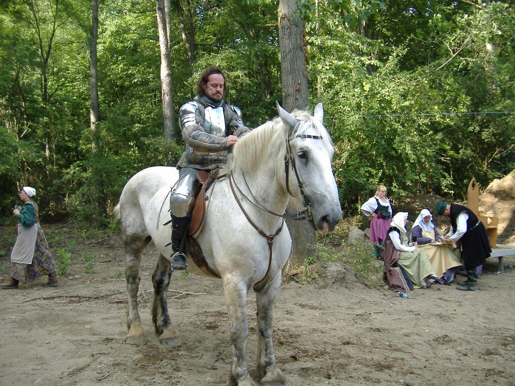 Knight 8 by akirastock