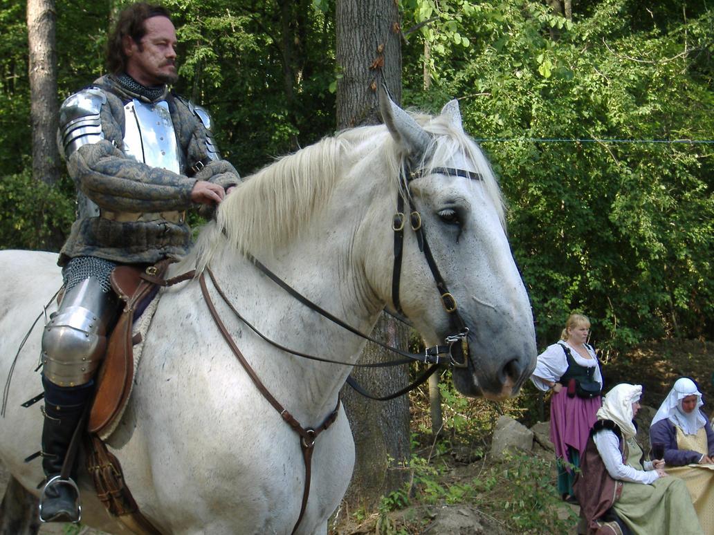 Knight 10 by akirastock