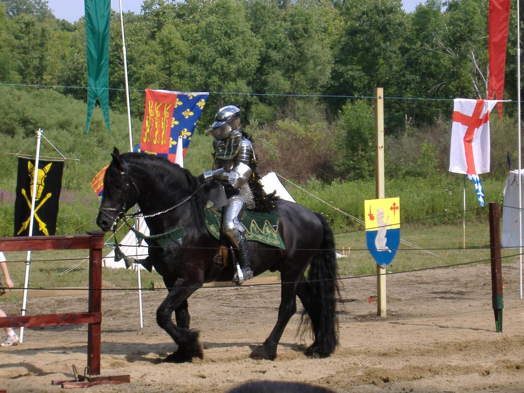 Knight 11 by akirastock