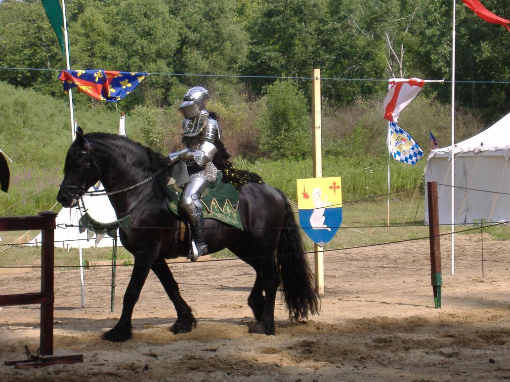 Knight 14 by akirastock