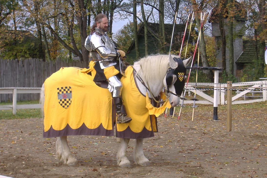 A Knight and Faithful Steed by akirastock