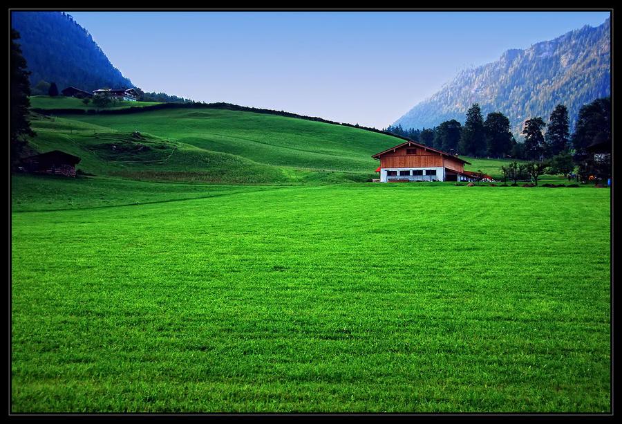Green, green, grass... by SenicaG